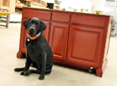 Stop In At Metro Cabinets And Meet Our Favorite Representative, Allie!